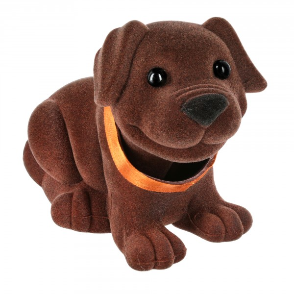 Wackelhund 20 x 14 cm in Geschenkbox