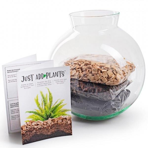 XXL Pflanzenterrarium- Nur noch Pflanze dazu - Fertig H ca. 20 cm