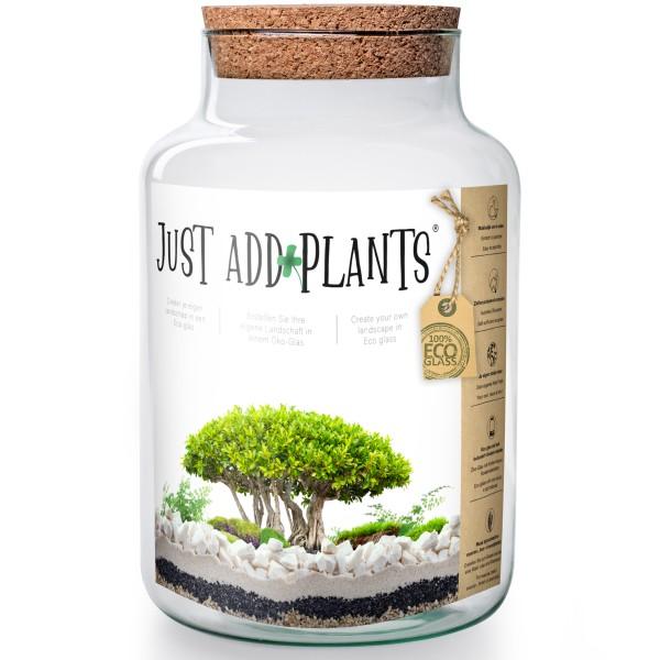 XXL Pflanzenterrarium- Nur noch Pflanze dazu - Fertig H 30 cm