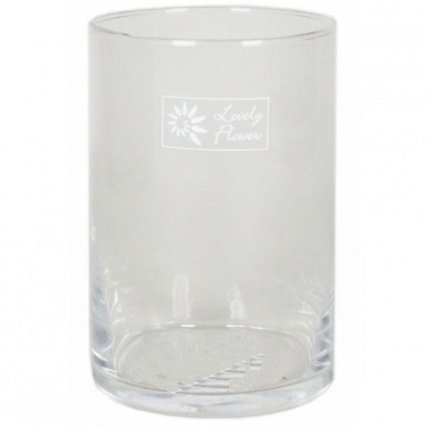6 x Zylinder Glas als Windlicht oder Terrarium für Pflanzen H 15 cm