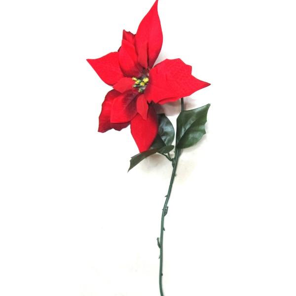 6 x Blumen Weihnachtsstern klassisch in rot, L 60 cm - Ø 23 cm